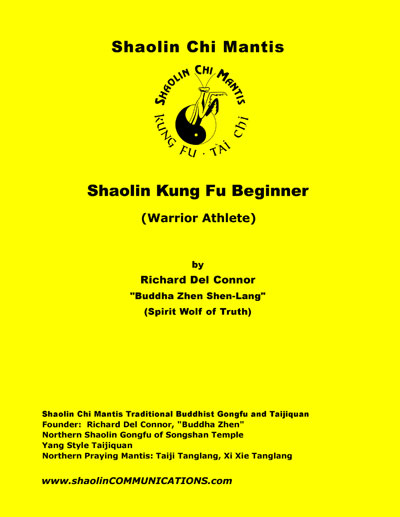 Beginner level Kung Fu book