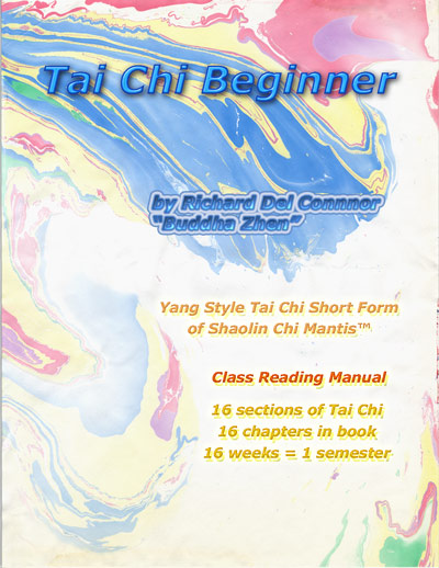 Front cover of Tai Chi Beginner book