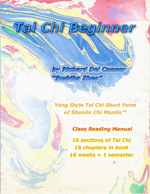 Tai Chi Beginner book cover